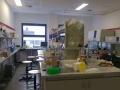Przyrodnicy z Trójki na wykładach UWr - 05