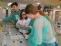 Przyrodnicy w laboratorium chemicznym UWr - 02